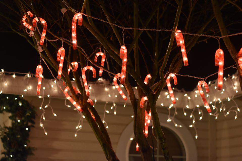 Ekologiczne oświetlenie LED na rynku